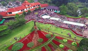 Ulasan Singkat Wisata Taman Bunga Nusantara Puncak Bogor